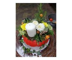 Stork, Blumen und Leuchten
